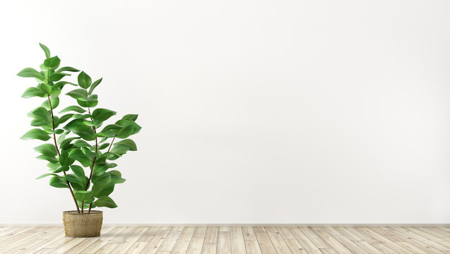 Interior background with plant 3d render