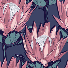 Protea seamless pattern design. Hand-drawn flower sketch. Botanical drawing, foliage background. Design  for wedding, invitation, web, banner, card, pattern, wallpaper vector illustration.