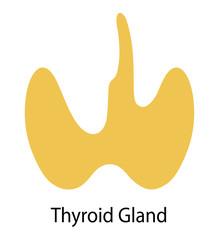 Human internal organ: thyroid gland. Vector image. Flat design
