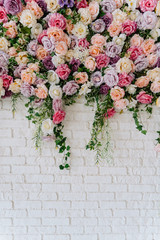 Beautiful Decorative Colorful Roses on White Wall. Indoor Wedding Ceremony Party Setting Detail. Tender Climber Blossom Bunch of Pastel Flower on Wall Background. Elegant Arrangement