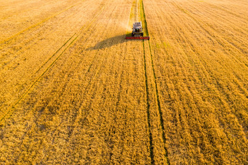 Harvesting background. Agricultural machinery
