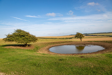 A dew pond on the top of Ditchling Beacon in Sussex, on a sunny summers evening Wall mural