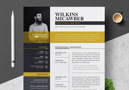 Professional Resume CV Template Layout