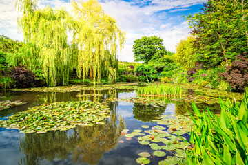 La pose en embrasure Jaune de seuffre Pond with lilies in Giverny