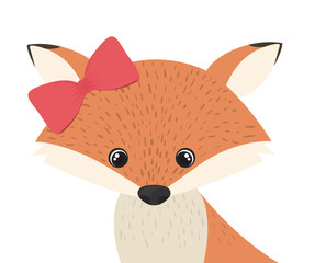 cute and adorable fox with frame