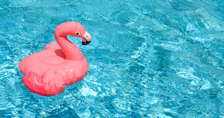 Inflatable pink flamingo float in bright blue pool water.