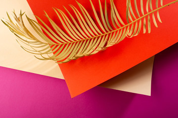 Golden palm branch and paper sheet