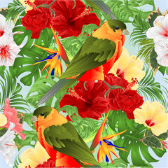 Foto op Canvas Papegaai Seamless texture tropical bird cute small funny bird and various hibiscus and Strelitzia reginae monstera palm watercolor style vintage vector illustration hand draw editable