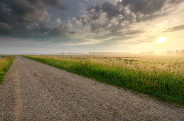 Wall Mural - golden sunrise over countryside road