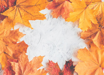 Wall Mural - Autumn thanksgiving composition with maple leaves. Top view