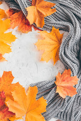 Wall Mural - Autumn composition with maple leaves. Top view.