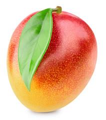 Mango fruit isolated on white