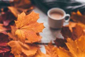 Autumn home cozy composition a cup of coffee with maple leaves.Selective soft focus Wall mural