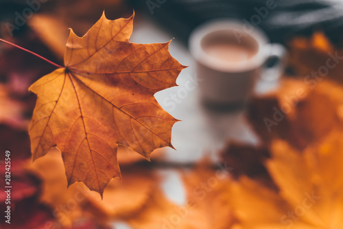 Wall mural Autumn home cozy composition a cup of coffee with maple leaves.Selective soft focus