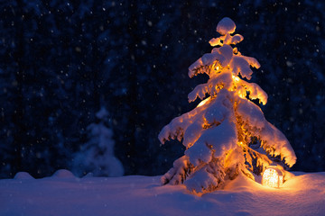 Christmas tree with a lantern in the snow in the woods. New year in the forest Fototapete