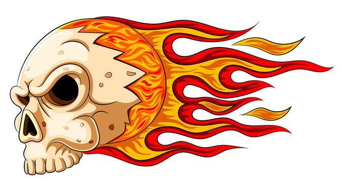 Flames skull horror evil burn hot