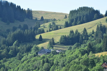 Papiers peints Olive Montagne paysage Savoie
