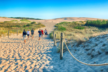 Fototapeta LEBA, POLAND - JULY 25, 2019: Slowinski National Park is situated on the Baltic Sea coast, near Leba, Poland. Desert landscape with the largest moving sand dunes in Europe. Hot day with clear sky.