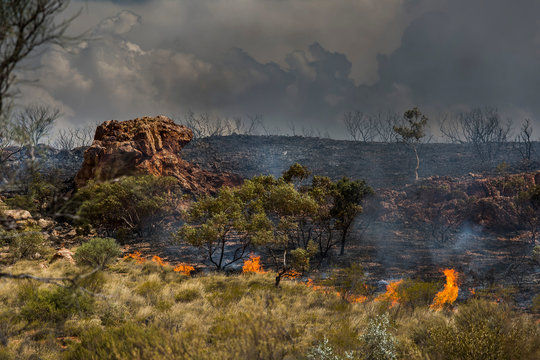 Wildfire burning, East McDonnell Ranges, Alice Springs, Northern Territory, Australia