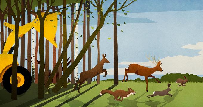 Forest animals running from deforestation bulldozer in woods