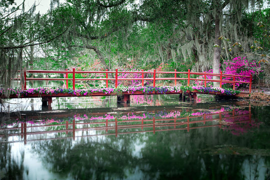 Red bridge with blooming flowers over still water in  Charleston, South Carolina, USA