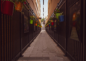 Acrylic Prints Narrow alley narrow artist's alley