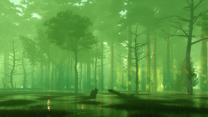 Foto auf Acrylglas Olivgrun Scary mysterious forest swamp at misty night