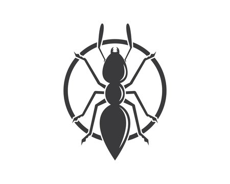 Ant icon vector illustration design