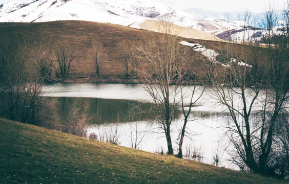 Dark Grassy River Bank with Snowy Mountains