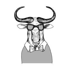 Fototapeta vector hand drawn head of bizon