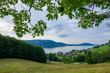 view to lake attersee near steinbach, salzkammergut, upper austria