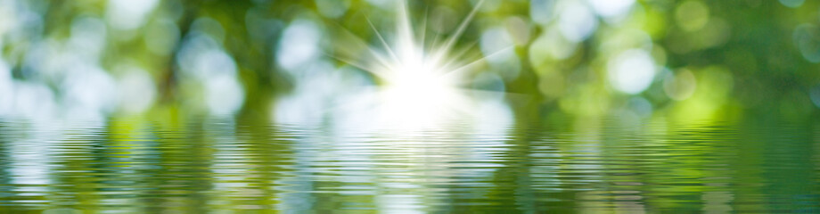 blurred image of natural background from water and plants Fototapete