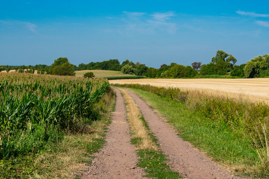 Hiking path through meadow landscape of Betschdorf, France