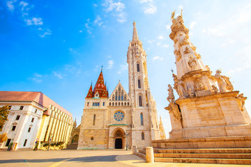 Wall Mural - Matthias Church and Holy Trinity Column in Budapest, Hungary