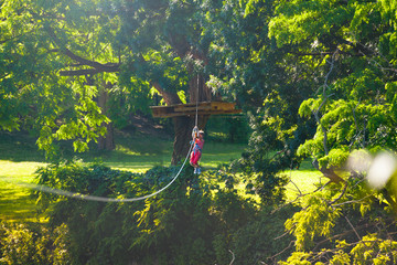 Boy slide over long high zip line between trees