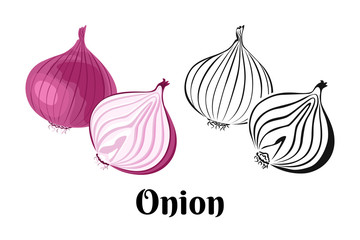 Fototapeta Vector onion vegetable. Whole red onion and slice isolated on a white background. Color illustration and black and white outline. Food image in cartoon simple flat style. obraz