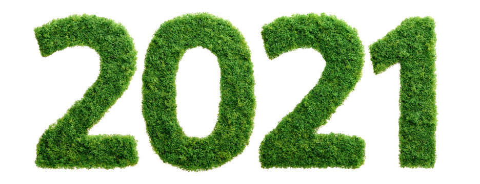 2021 green grass ecology year concept isolated