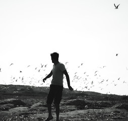 man with seagulls