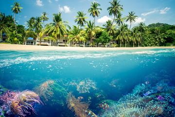 Foto op Aluminium Onder water Paradiesischer Strand mit Korallen Riff
