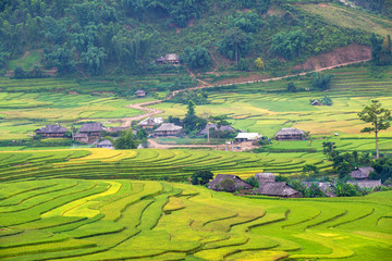 Beautiful rice paddy fields with hut prepare the harvest on terraced of Mu Cang Chai district Yen Bai province Northwest Vietnam.