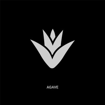 white agave vector icon on black background. modern flat agave from nature concept vector sign symbol can be use for web, mobile and logo.