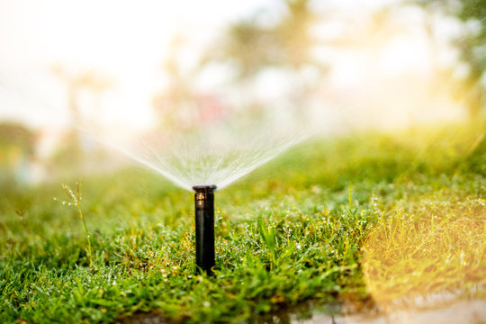 Close up details of automatic grass, lawn pop-up sprinkler