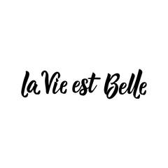 Translation from French: Life is beautiful. Vector illustration. Lettering. Ink illustration. La Vie est Belle.