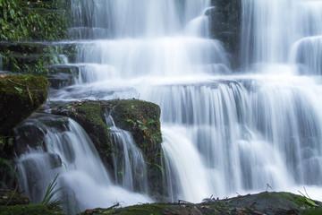 Poster de jardin Cascades waterfall in forest