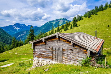 Wall Mural - hut at the european alps