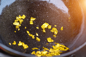 gold panning or digging,Discovering Success and Investing Concepts with Business Partners.