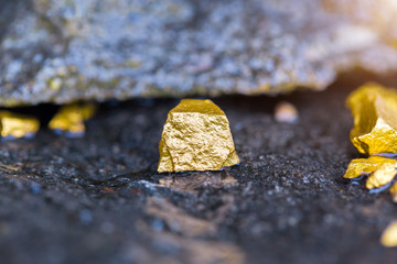 Gold on the stone floor Discovering Success and Investing Concepts with Business Partners.
