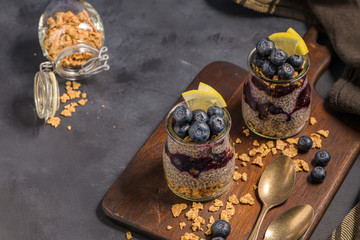 Chia pudding with blueberries