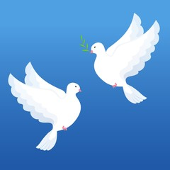 Two pigeons in flat style. white doves with olive twig on a blue background Vector illustration