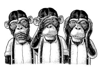Three wise monkeys. Not see, not hear, not speak. Vintage engraving Fotoväggar
